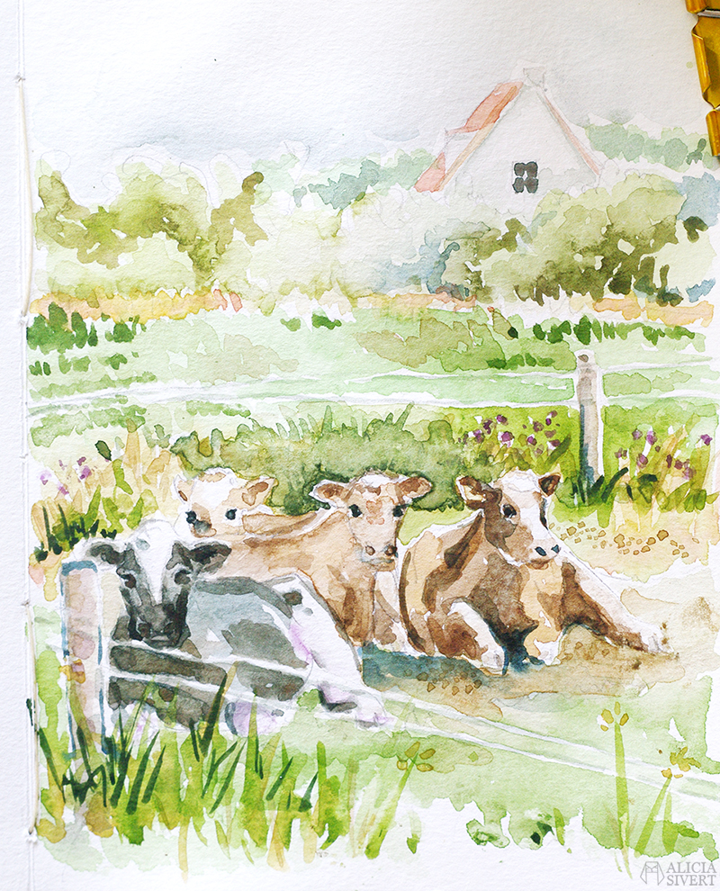 alicia sivert alicia sivertsson aliciasivert augstens kor cow cows cattle ko kossa kossor gotland storsudret sudret skapa skapande kreativitet måla målning måleri painting paint creativity paintings målningar akvarell aquarelle watercolor watercolour vattenfärg steg för steg step by step time lapse film movie klipp diy do it yourself gör det själv konst konstnär