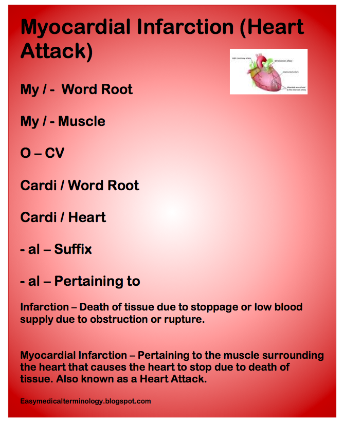 Easy Medical Terminology New Muscular System Reference: Easy Medical Terminology
