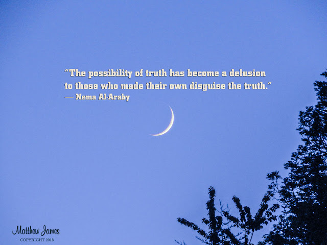 """""""The possibility of truth has become a delusion to those who made their own disguise the truth."""" ― Nema Al-Araby"""