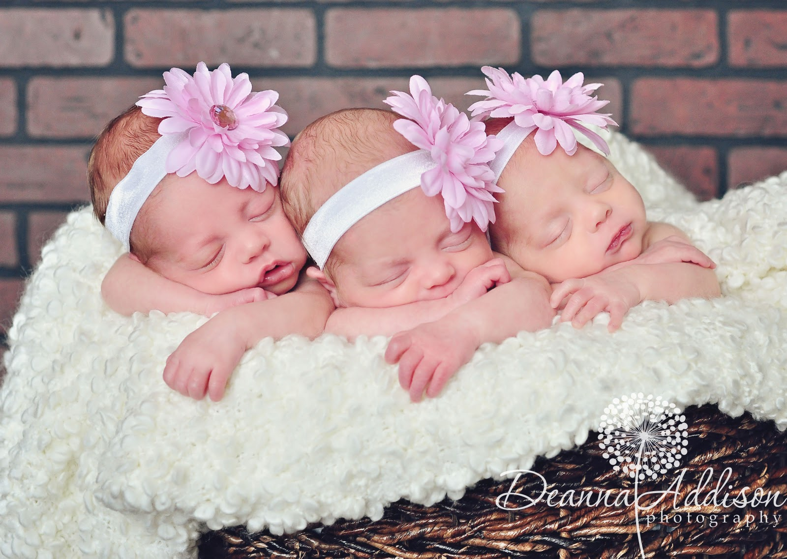 Deanna Addison Photography: The Abbe Triplets - Newborn