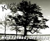 http://jahreszeitenbriefe.blogspot.de/2016/12/mein-freund-der-baum-46-der-wahre.html