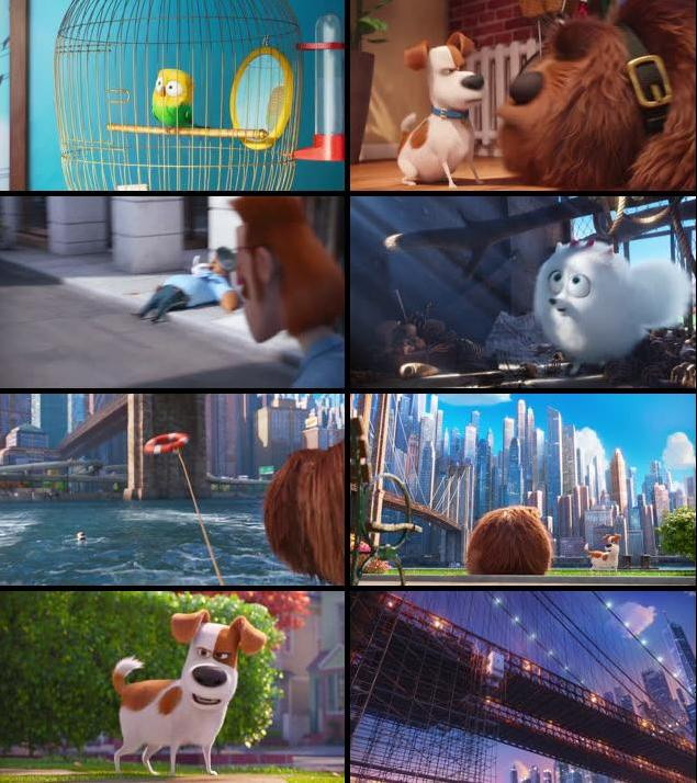 The Secret Life Of Pets 2016 Dual Audio ORG Hindi 480p BluRay