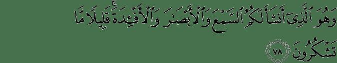 Surat Al Mu'minun ayat 78