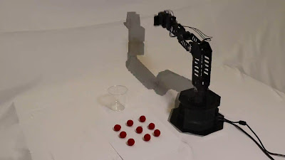 Robot arm with developing self image overlay