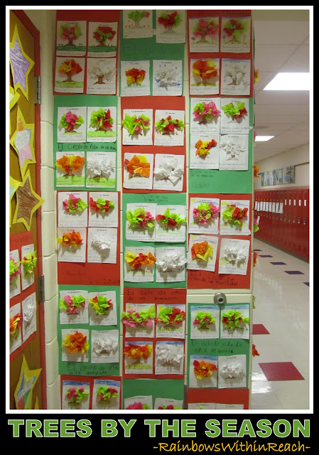 photo of: Trees by the Season in Elementary School (via RainbowsWithinReach)