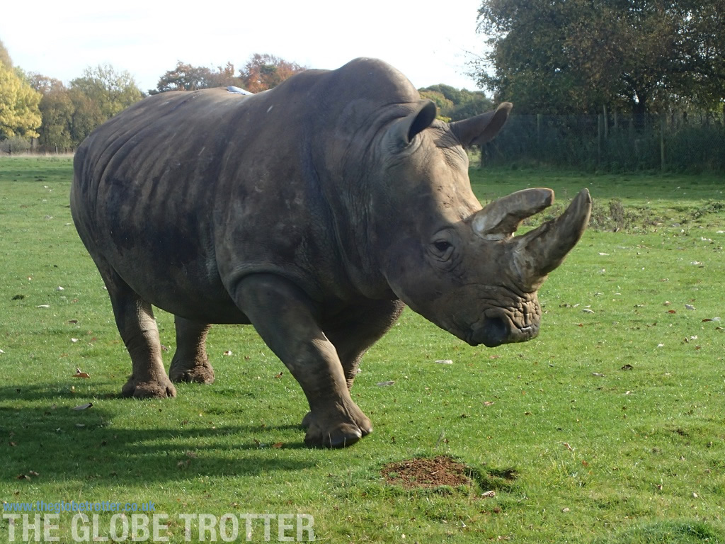 The ZSL Whipsnade Zoo