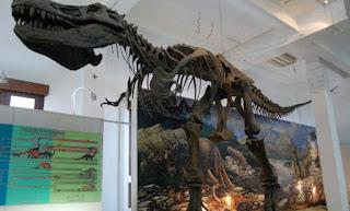 Edukasi Museum Geologi Bandung
