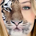 تطبيق مميز لجهازك الأندرويد لعمل صورة نصف أنسان ونصف نمر أو أسد بسهولة