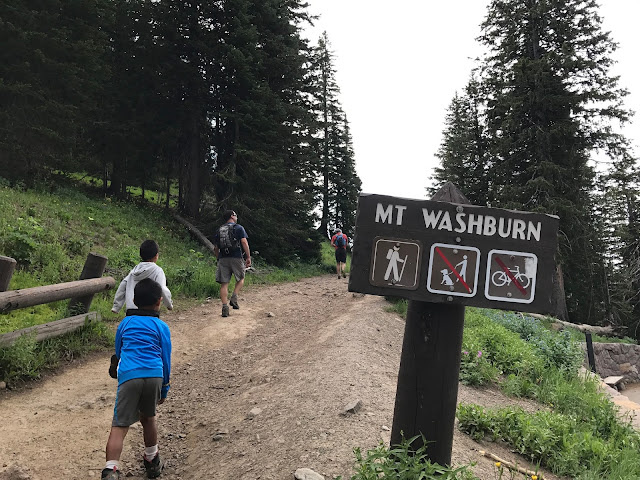 Mt. Washburn Hike trailhead