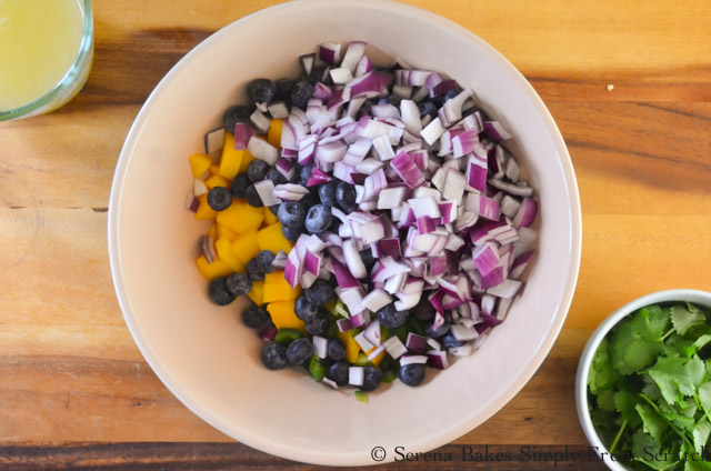 Blueberry-Mango-Salsa-Red-Onion.jpg