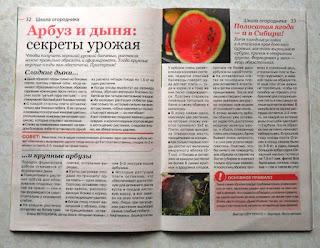 Очередная моя статья в журнале