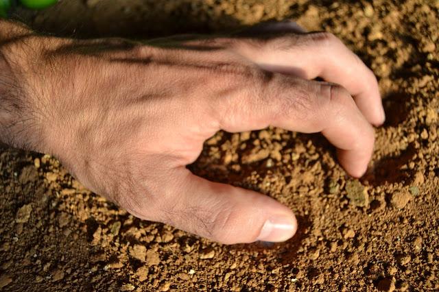 Hand im Sand, Quiz Bauer, Redensarten Bauer, Seniorenarbeit, Aktivierung