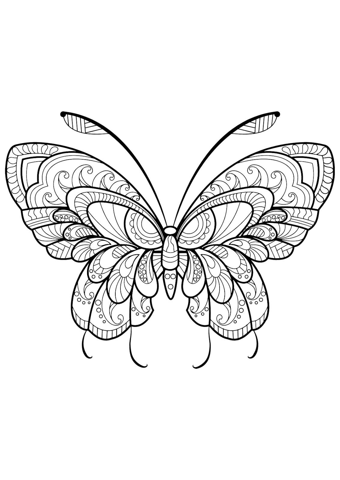Tranh tô màu con bướm cách điệu 6