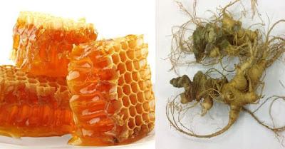 Sâm Ngọc Linh và mật Ong