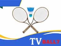 Streaming Badminton