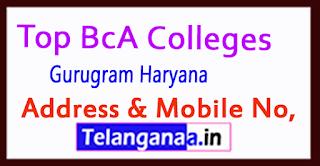 Top BCA Colleges in Gurugram Haryana