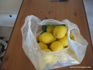 lemons from a friend's tree in Cyprus