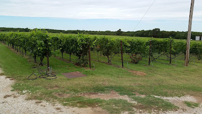 To the Red River Valley We Go: A Recent Texas Wine Trip