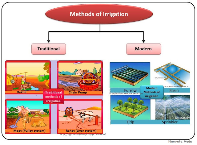 methods of irrigation Traditional and modern irrigation methods 1 traditional irrigation methods: (i) check basin method (ii) furrow irrigation method (iii) strip irrigation method (iv) basin irrigation method.