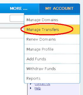 Custom+Domain+Setup+Step7