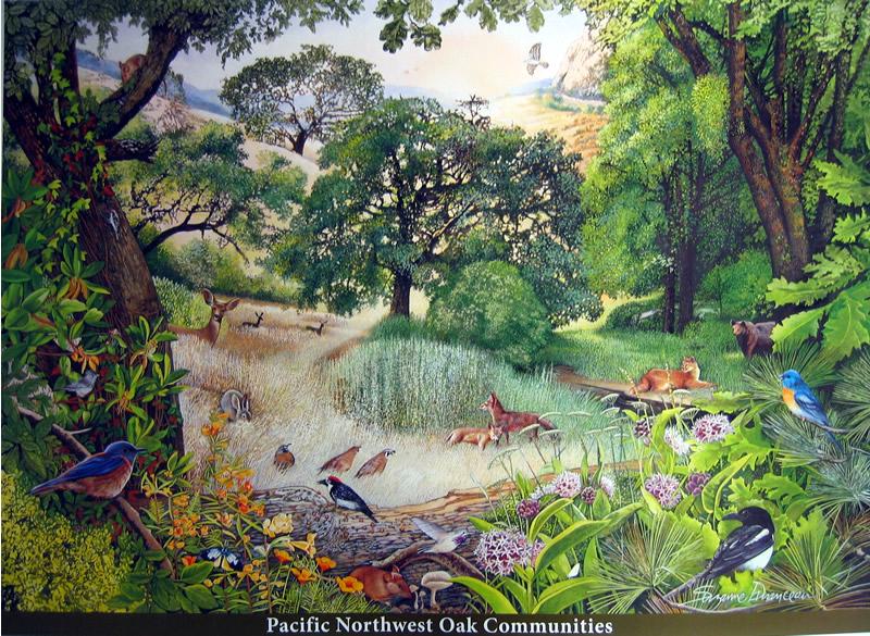 Pengertian Ekosistem Komponen Tipe Jenis Jenis Dan Contohnya