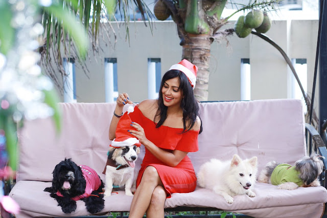 Actress Amala Paul Christmas Celebrations Photos