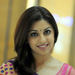 Richa Gangopadhyay New Saree Stills
