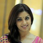 Richa Gangopadhyay New Saree Stills