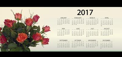 Happy New Year Calendar 2017 Card