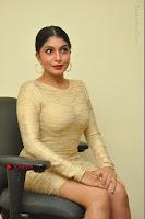 Actress Pooja Roshan Stills in Golden Short Dress at Box Movie Audio Launch  0104.JPG