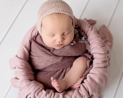 cari baby sister