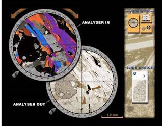 Polarizer & Analyzer