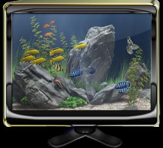 Dream aquarium screensaver full peliculas y - Dream aquarium virtual fishtank 1 ...