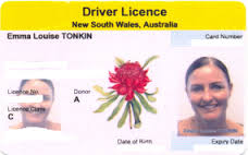 Licence World News Trucks Drivers Australia Online Check