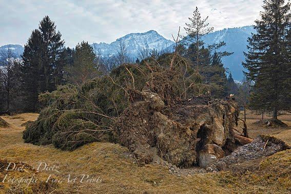 Wintersturm Burglind vom 2./3. Januar 2018