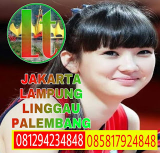 Travel Pringsewu Dari Jakarta