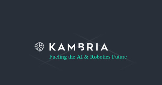 Kambria and Liquidity Network ICO Reviews