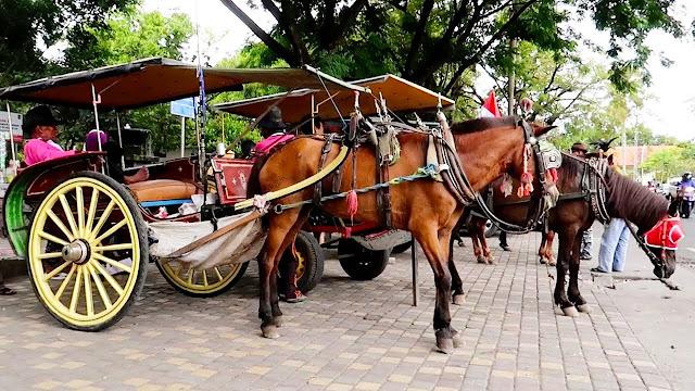 Macam-macam Transportasi Darat di Indonesia