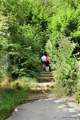 Czerwony szlak prowadzący z parkingu do zamku Vranov