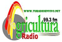 RADIO AGRICULTURA 99.3 FM ANDAHUAYLAS