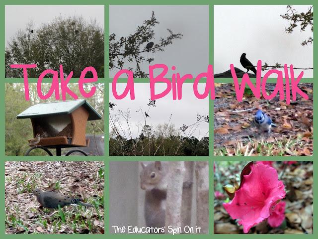 Baby Time Bird Walk