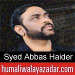 https://www.humaliwalyazadar.com/2018/10/syed-abbas-haider-nohay-2019.html