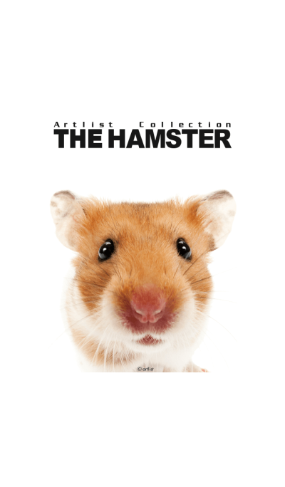 Artlist Collection THE HAMSTER