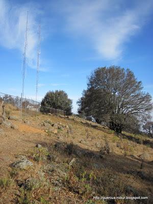 Cerro Viejo - Las antenas