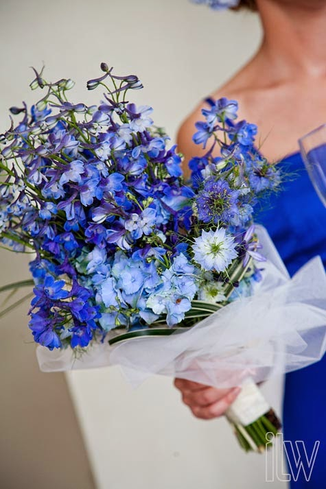 delphinium bouquet - photo #13