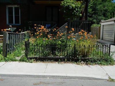 Leslieville Frontyard Garden Summer Cleanup Before by Paul Jung Gardening Services--a Toronto Gardening Company