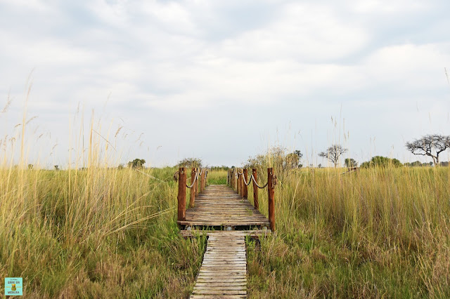 Mboma Island en la Reserva de Moremi de Botswana