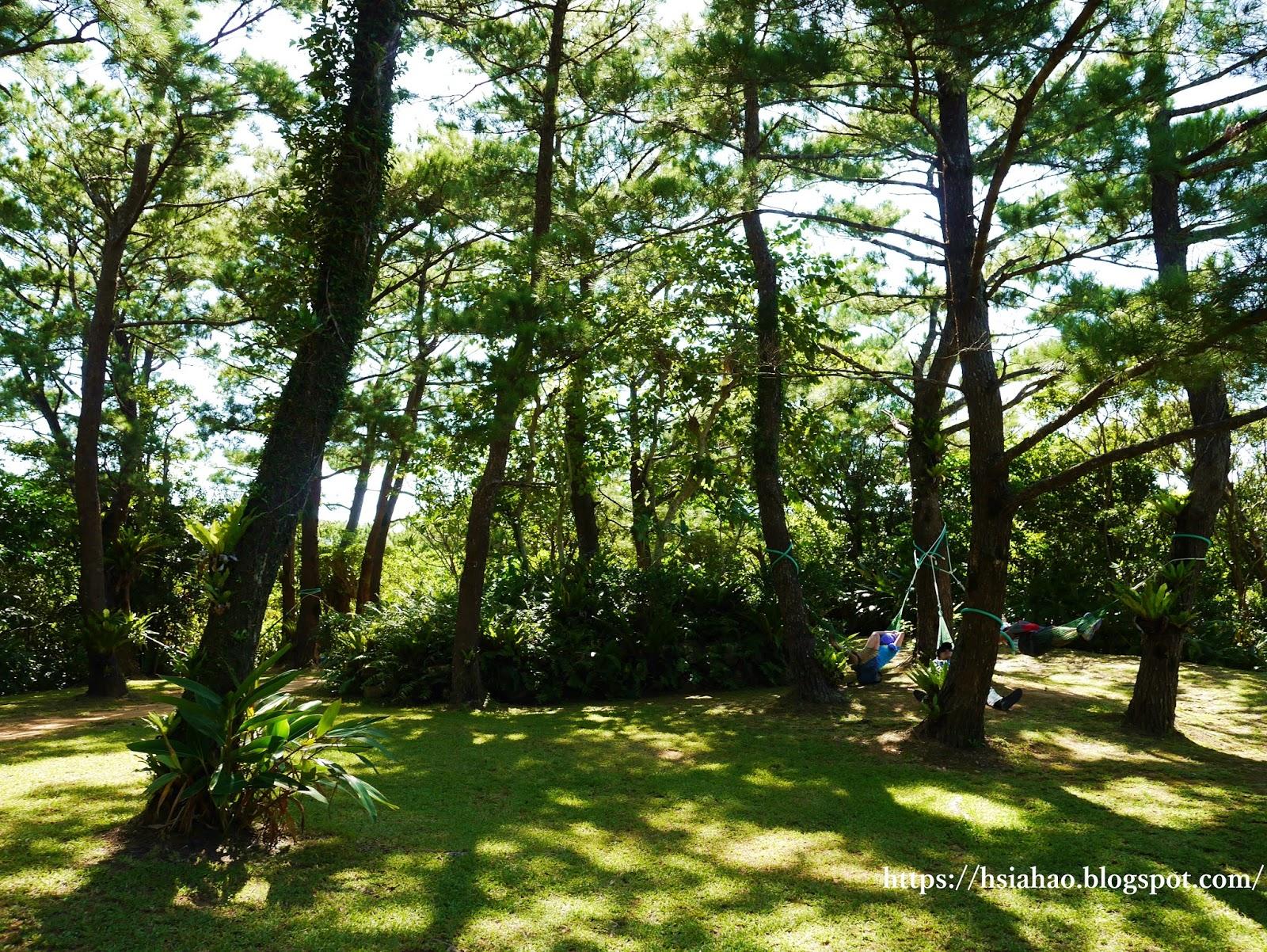 沖繩-推薦-景點-BIOS之丘-自由行-旅遊-Okinawa-ビオスの丘-bios-hill