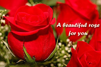 Lovely Rose Day Wishes