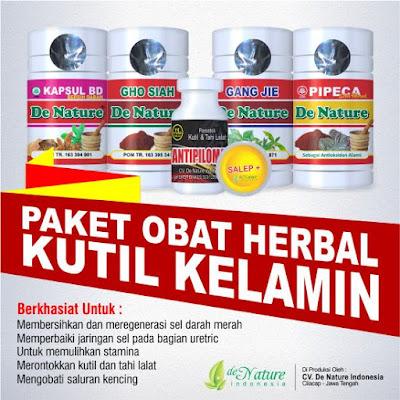 paket obat herbal untuk penyakit kutil kelamin